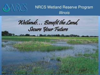 Wetlands… Benefit the Land,  Secure Your Future