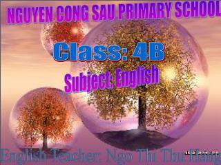 NGUYEN CONG SAU PRIMARY SCHOOL
