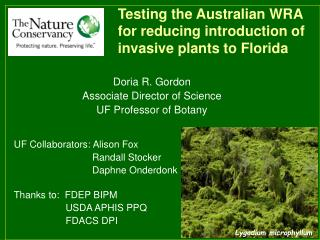 Testing the Australian WRA  for reducing introduction of invasive plants to Florida
