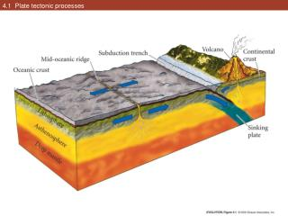 4.1  Plate tectonic processes