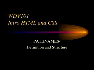 WDV101 Intro HTML and CSS