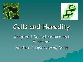 Cells and Heredity