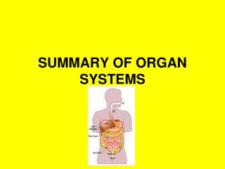 SUMMARY OF ORGAN SYSTEMS
