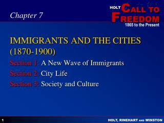 IMMIGRANTS AND THE CITIES 1870-1900
