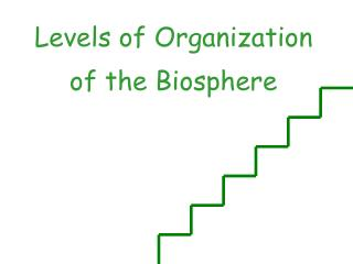 Levels of  O rganization of the  B iosphere