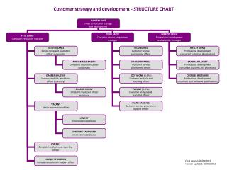 Customer strategy and development - STRUCTURE CHART
