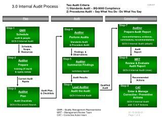 3.0 Internal Audit Process
