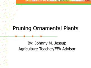 Pruning Ornamental Plants