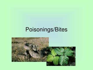 Poisonings/Bites