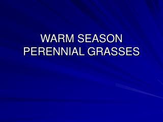 WARM SEASON PERENNIAL GRASSES