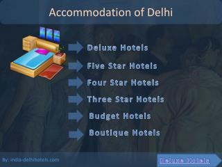 Information of Delhi Hotels