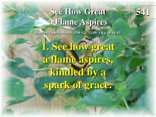 See How Great a Flame Aspires  (Verse 1)