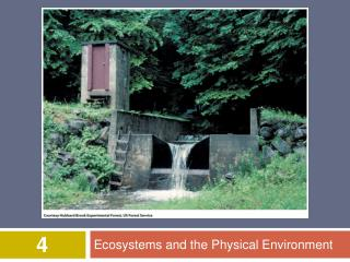 Ecosystems and the Physical Environment
