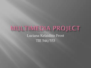 Multimedia project