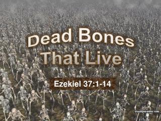 Dead Bones That Live