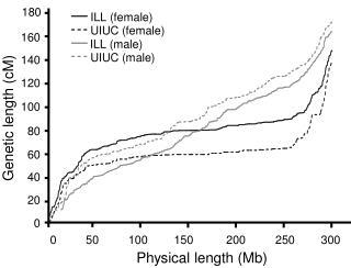 Physical length (Mb)