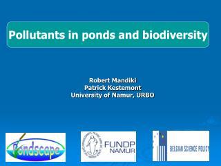 Robert Mandiki Patrick Kestemont University of Namur, URBO