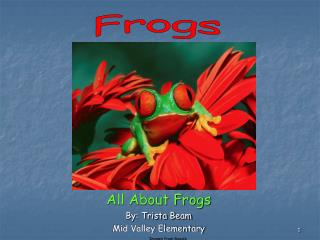 All About Frogs By: Trista Beam Mid Valley Elementary