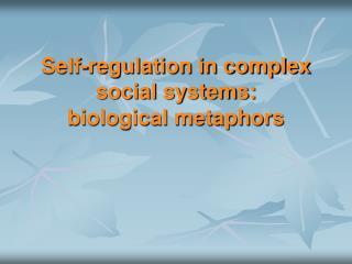 Self-regulation in complex social systems: biological metaphors