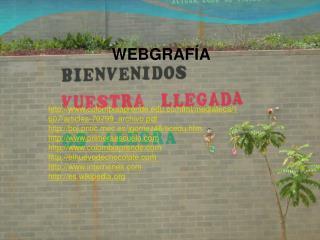 WEBGRAF�A