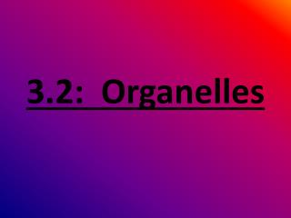 3.2:  Organelles