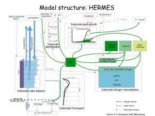 Model structure: HERMES