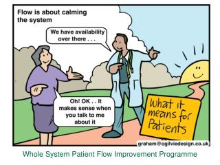 Whole System Patient Flow Improvement Programme