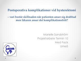 Marielle Sandström Projektarbete Termin 10 Med Fack Umeå