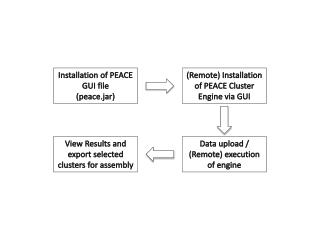 Installation of PEACE GUI file ( peace.jar )