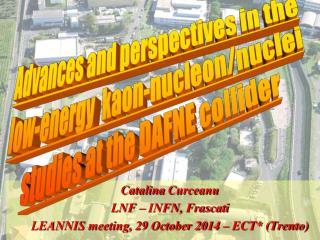Catalina  Curceanu LNF � INFN,  Frascati LEANNIS meeting, 29 October 2014 � ECT* (Trento)