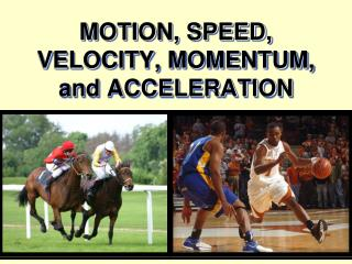 MOTION, SPEED, VELOCITY, MOMENTUM, and ACCELERATION