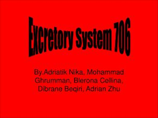 By.Adriatik Nika, Mohammad  Ghrumman, Blerona Cellina, Dibrane Beqiri, Adrian Zhu
