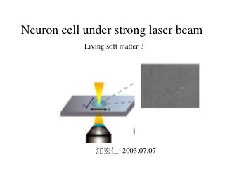 Neuron cell under strong laser beam