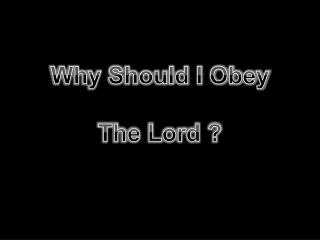 Why Should I Obey The Lord ?