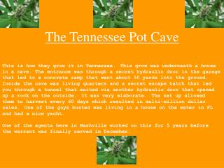 The Tennessee Pot Cave