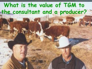 What is the value of TGM to the consultant and a producer?