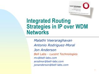 Integrated Routing Strategies in IP over WDM Networks