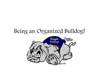 Being an Organized Bulldog!