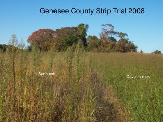 Genesee County Strip Trial 2008