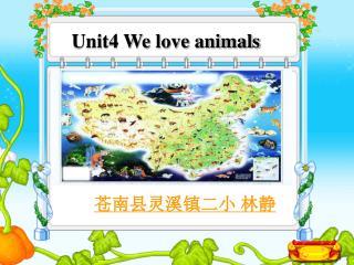Unit4 We love animals