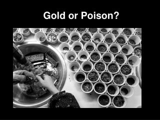 Gold or Poison?
