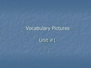 Vocabulary Pictures Unit #1