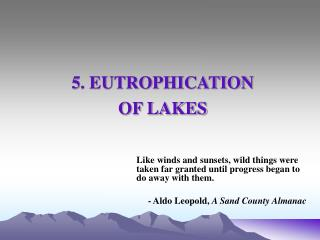 5. EUTROPHICATION  OF LAKES