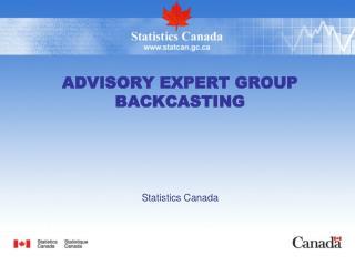Advisory Expert Group Backcasting