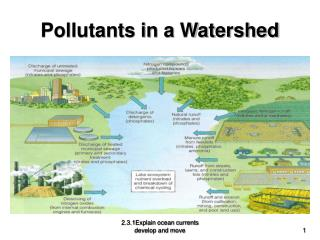 Pollutants in a Watershed