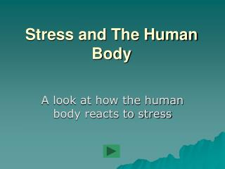 Stress and The Human Body