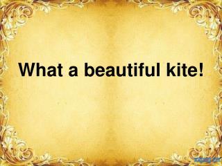 What a beautiful kite!