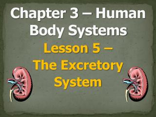 Chapter 3 – Human Body Systems