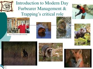 Introduction to Modern Day Furbearer Management & Trapping�s critical role