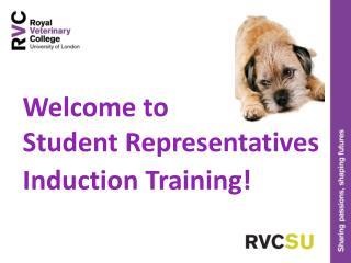 Welcome to Student Representatives  Induction Training!